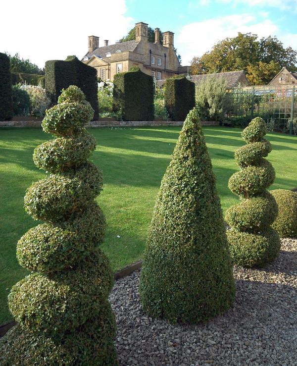 Topiary ferrebeekeeper for Garden topiary trees