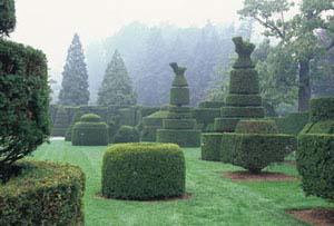 Topiary ferrebeekeeper for Casa jardin winter park