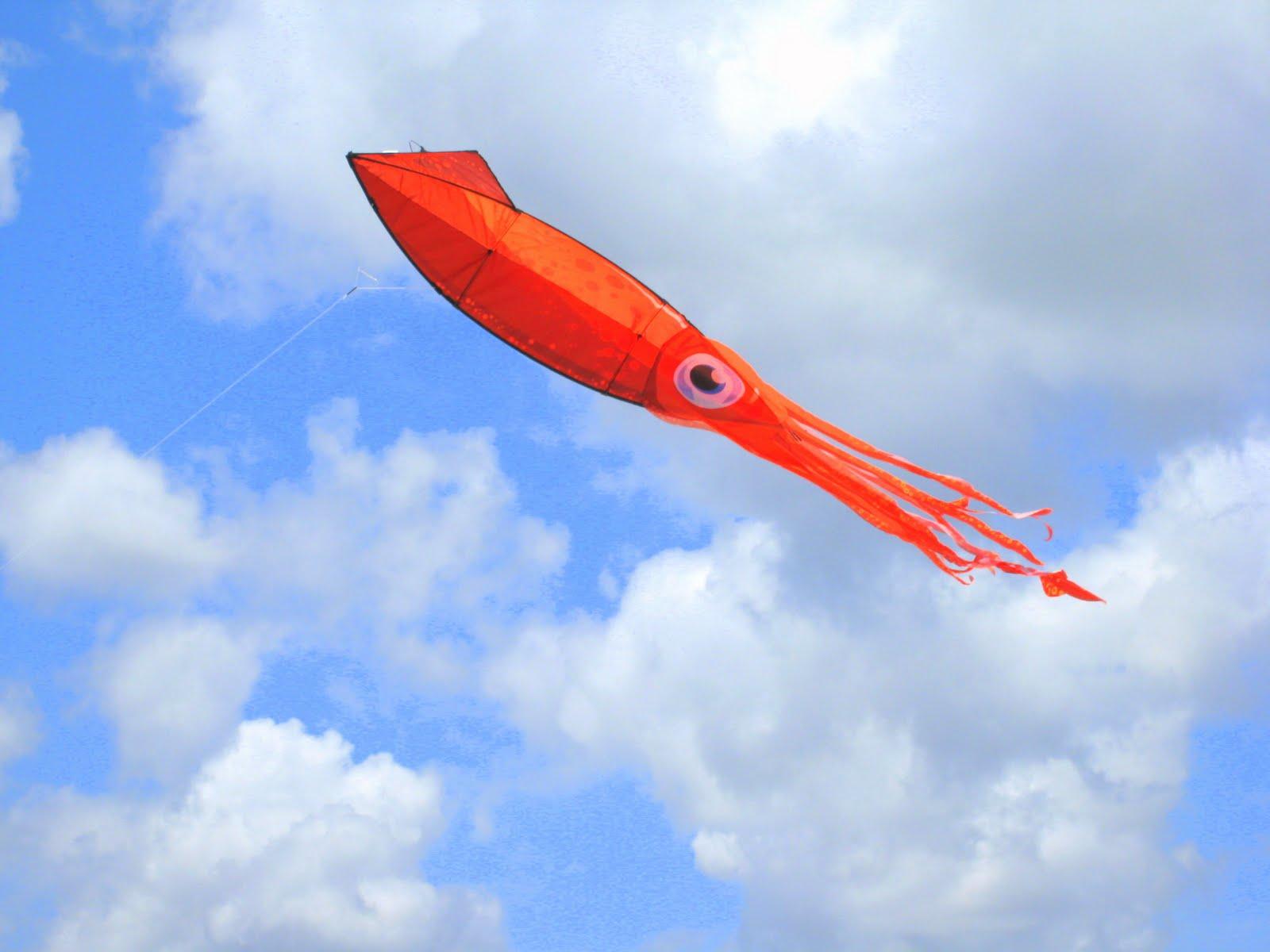 Flying Squid | ferrebeekeeper