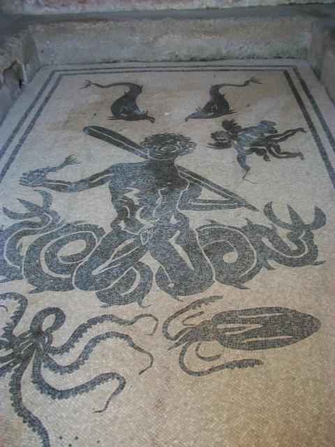 Mollusk Mosaics Ferrebeekeeper