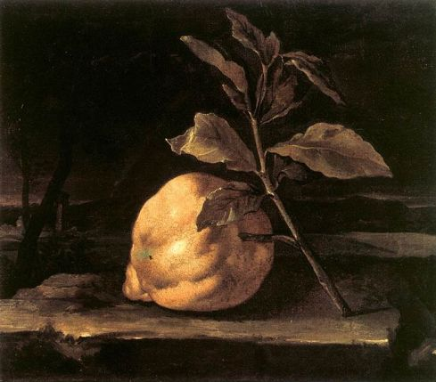 Large Citron in a Landscape (Bartolomeo Bimbi, ca. 1690s, oil on canvas)