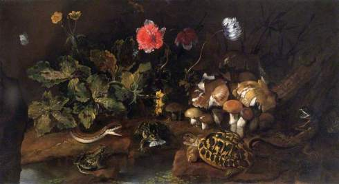 Paolo Porpora (Still Life with a Snake, Frogs and a Tortoise)