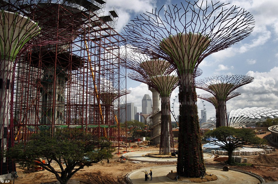 The Supertrees being built
