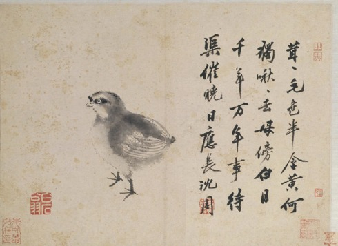Quail painting from the Ming dynasty animal painting model book of Shen Zhou (ca. 1427-1509)