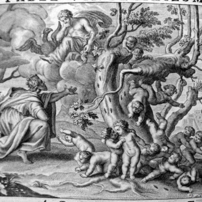 Creation of the Myrmidons (artist unknown)