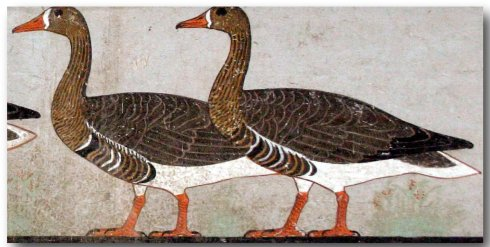 Detail of Geese in Frieze from Nefermaat's tomb (ca. 2600-2550 BC)