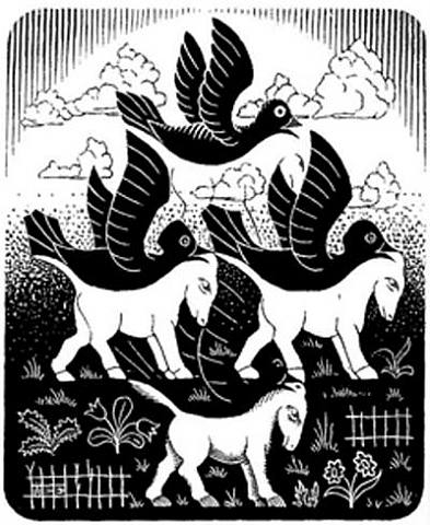 Horses and Birds (M. C. Escher, 1949, wood engraving)
