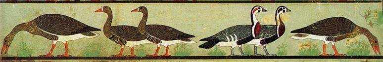 Geese in Frieze from Nefermaat's tomb (ca. 2600-2550 BC)