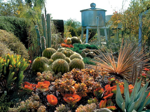 The H Warren Buckner Cactus and Succulent Garden (note the water tower)