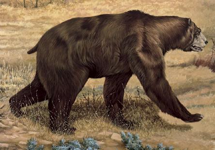 Giant Short-Faced Bear (by Joseph S. Venus)