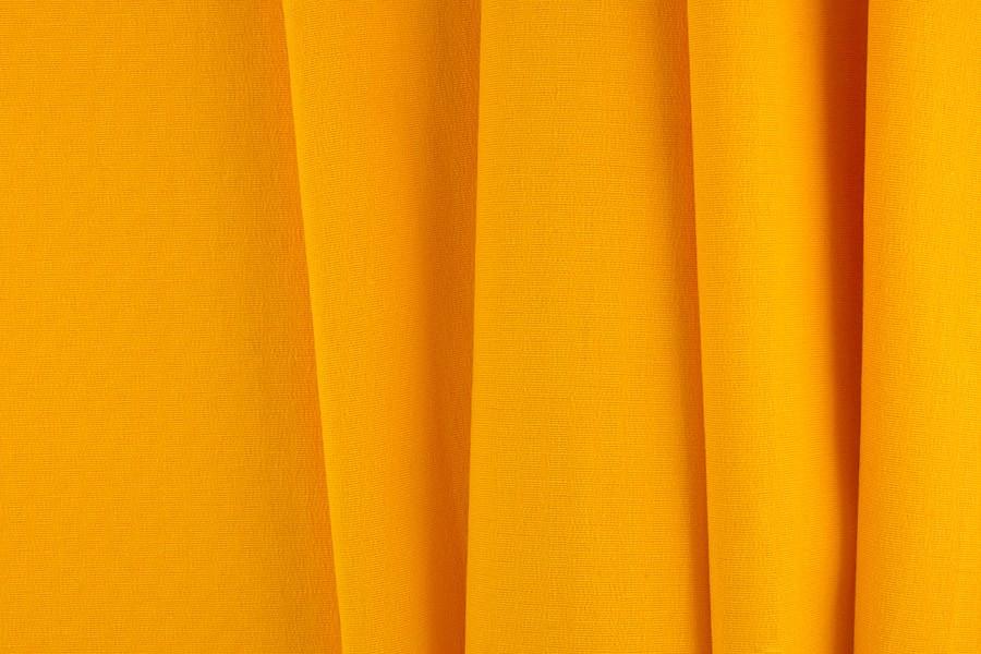 yellow ferrebeekeeper