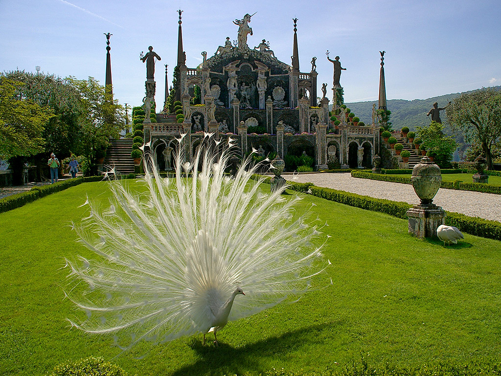 The Gardens of Isola Bella