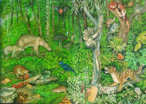 The animals and plants of the Oligocene rainforest at Riversleigh (as envisioned by an artist)