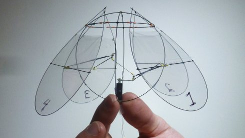 Ornithopter based on Jellyfish (Dr. Ristroph and Dr. Childress)