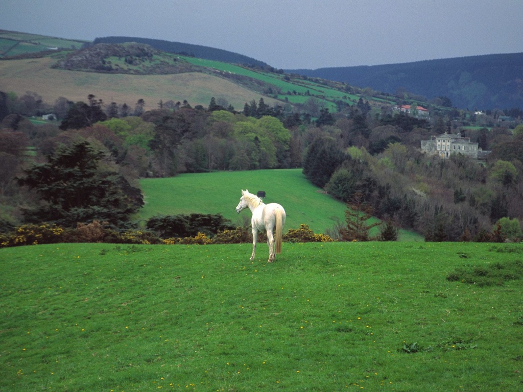 Most Inspiring Wallpaper Horse Landscape - wicklow-countryside-powerscourt-castle-ireland  Best Photo Reference_17112.jpg