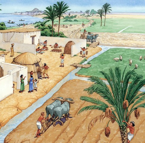 Agriculture in Ancient Mesopotamia (from http://www.preceden.com)