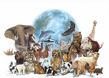 all_animals_and_earth_350