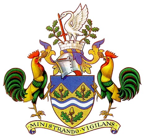The Shield of Dorking in the Mole River Valley (with bonus swan)