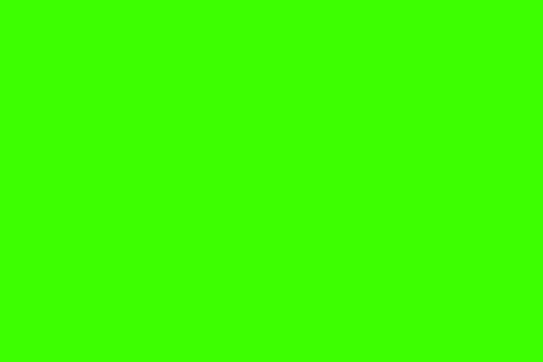 Harlequin (yellow-green)