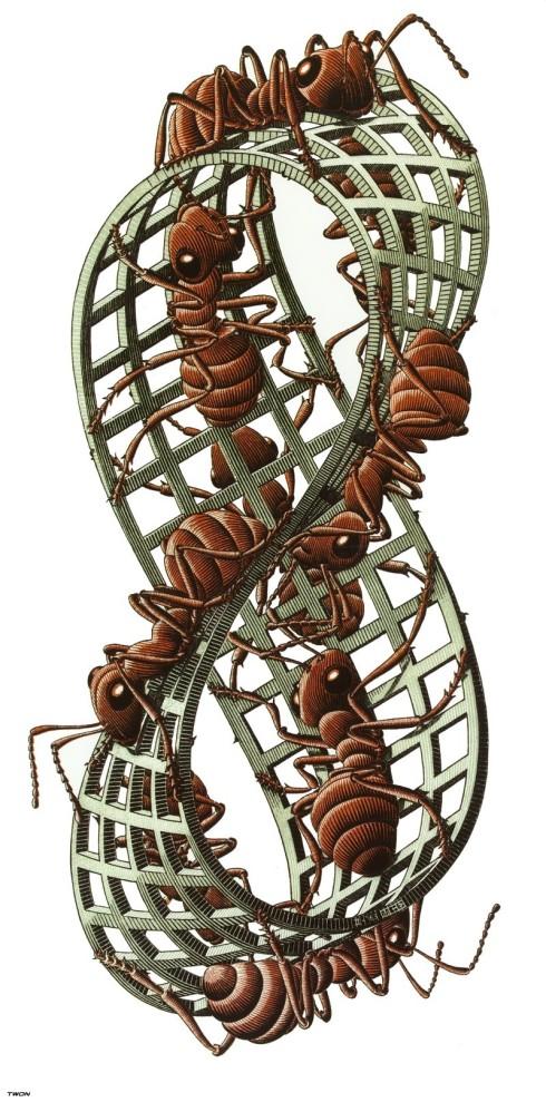 Möbius Strip II (M.C. Escher, 1963, Woodcut)