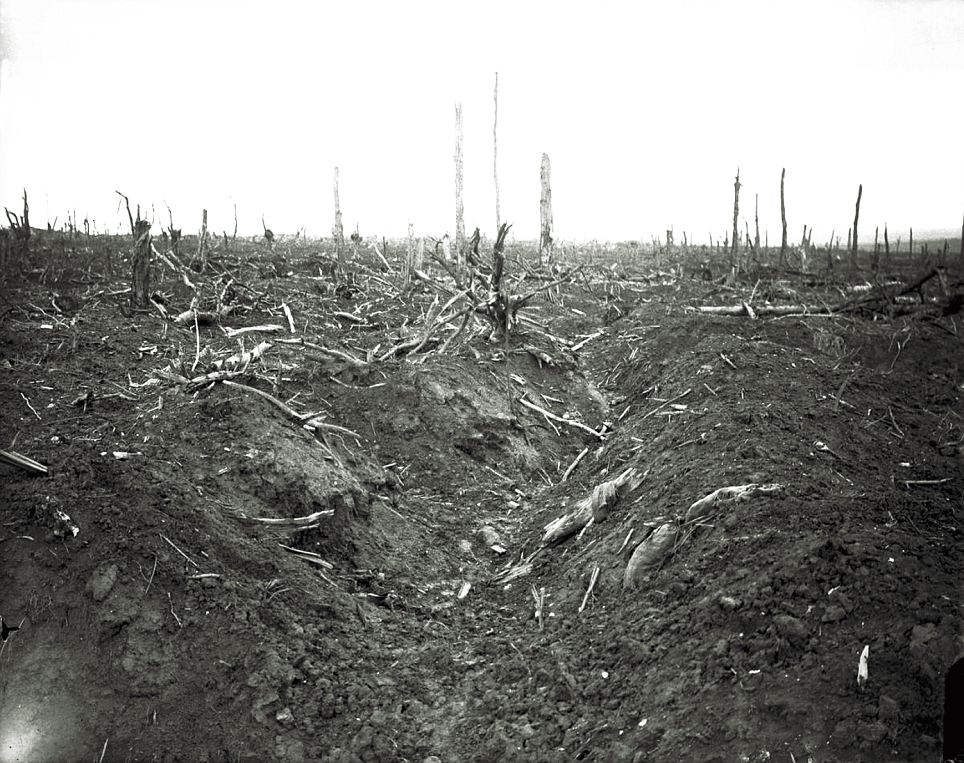 An abandoned trench destroyed by shellfire, Delville Wood near Longueval, Somme, September, 1916