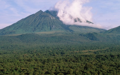 Virunga National Park, Democratic Republic of Congo, Home of the Endangered Mountain Gorilla