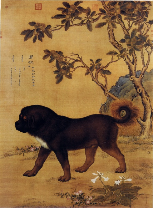 Picture of Cangni--a Tibetan Mastiff (Giuseppe Castiglione, Ching Dynasty, ink and watercolor on silk)