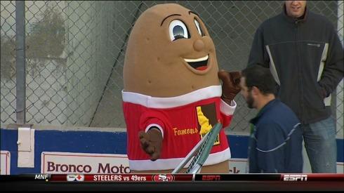 The famous Idaho potato