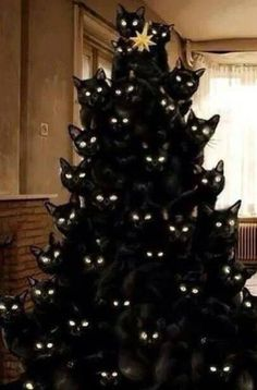 This one might be slightly photoshopped--although cats do love Christmas trees!