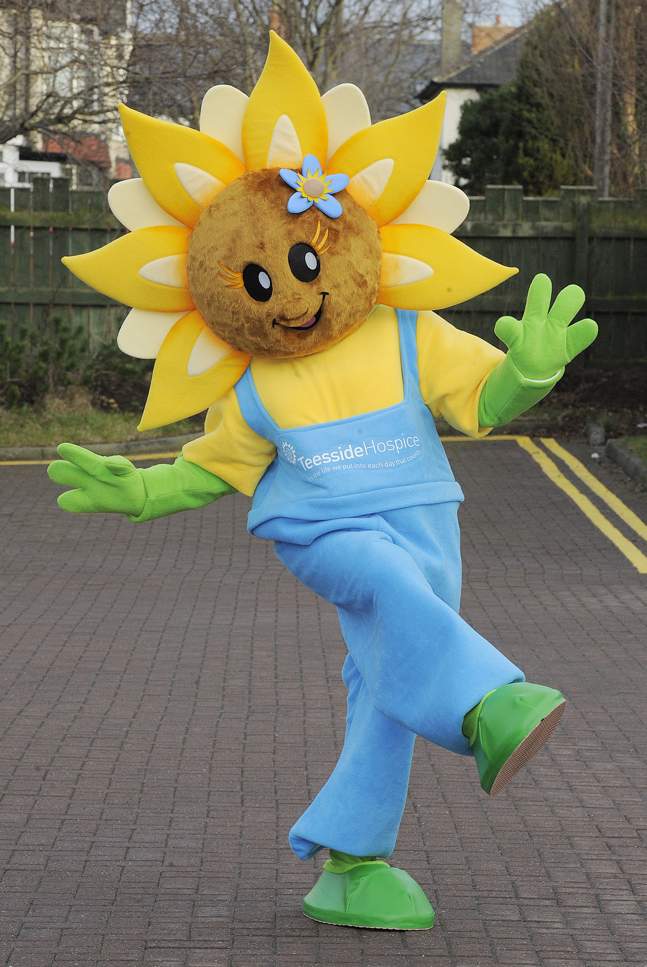 This sunflower mascot is from a hospice...so I have no idea what to make of that :(