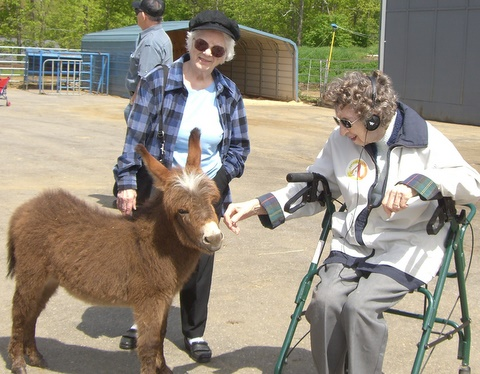 MAKING FRIENDS !  HAPPY BIRTHDAY GLADY'S  99YEARS YOUNG