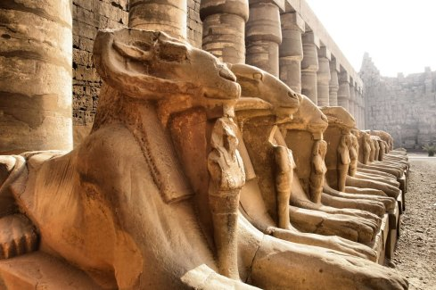 Statues of Amun rams from the great forecourt of the Temple of Karnak