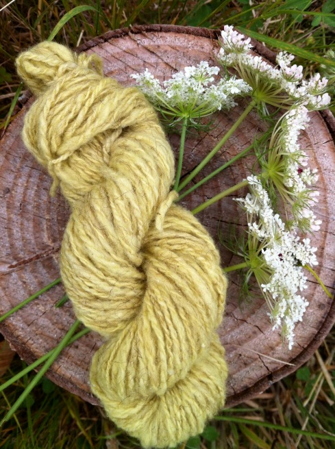 Wool dyed with Queen Anne's Lace