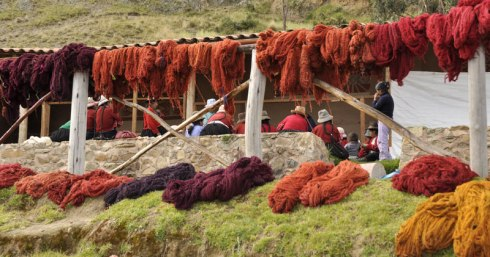 Wool and Llama hair died with cochineal in Peru