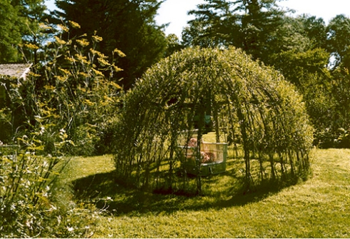Living Willow Structure by Bonnie Gale