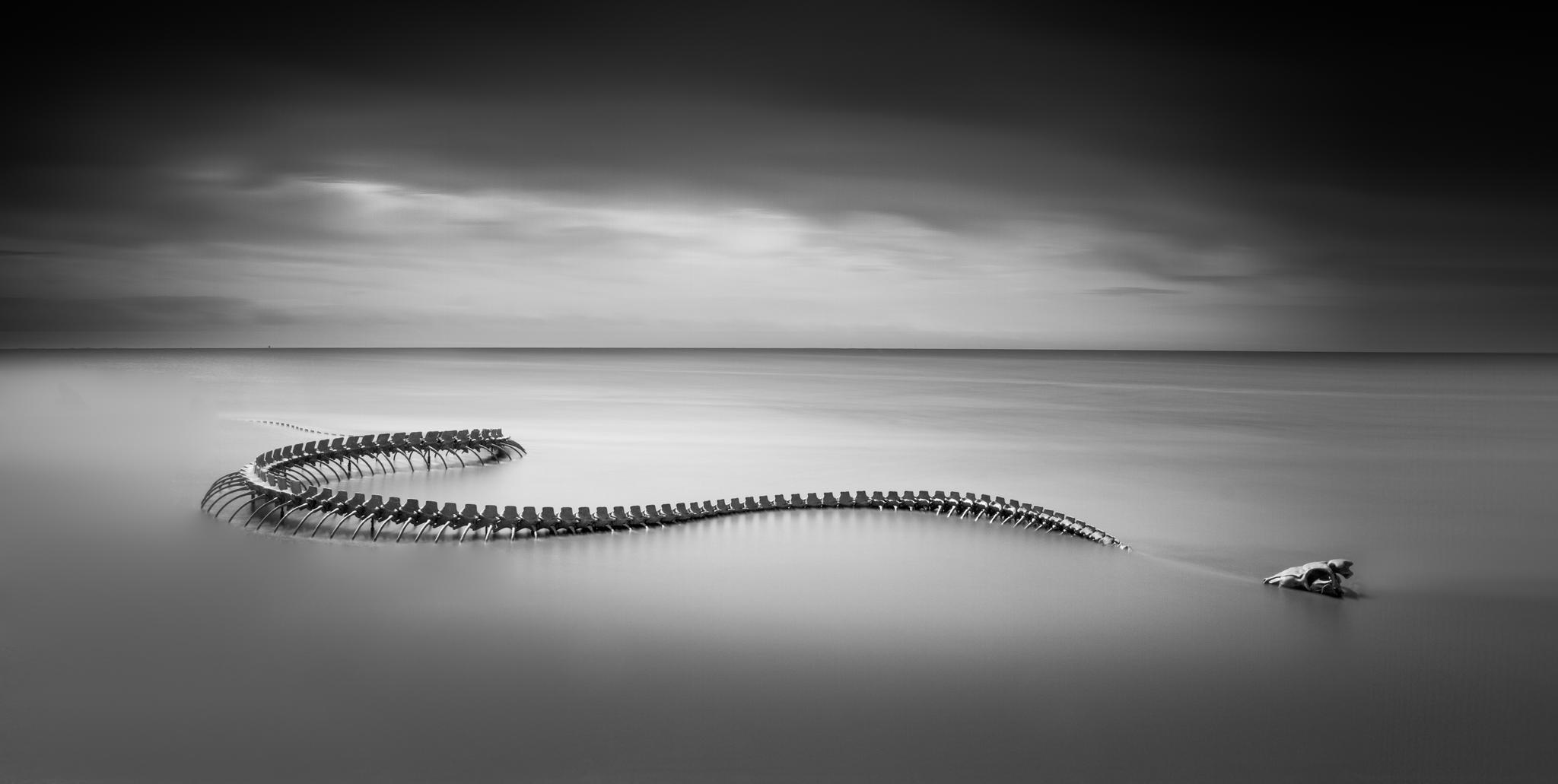 Serpent d'Océan  (Huang Yong Ping, 2012, aluminum sculpture)