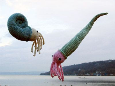 Knitted Ammonite and Orthocone (from Knitty.com)
