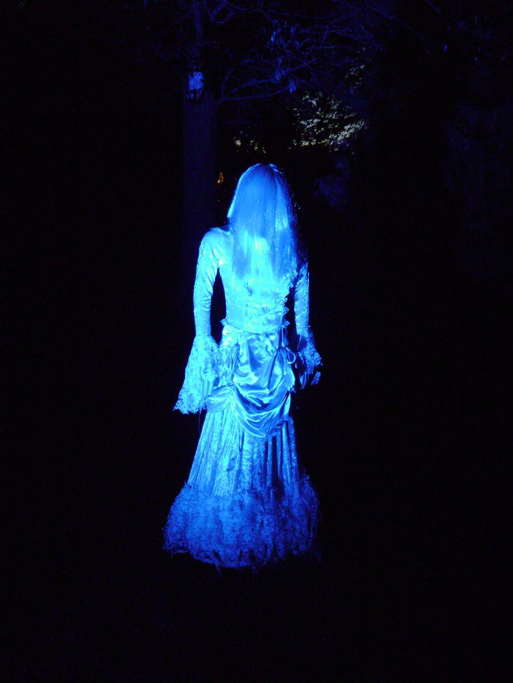 electric blue ferrebeekeeper