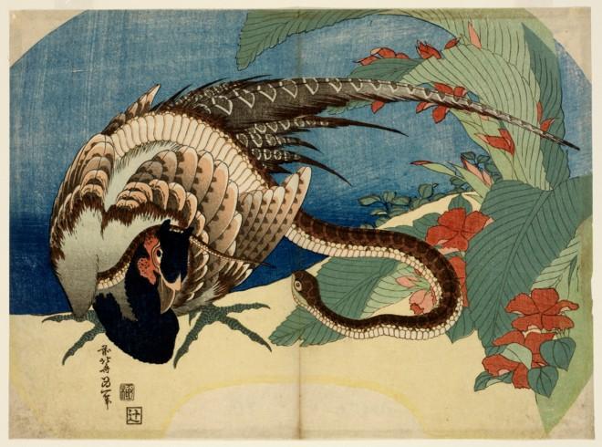 Snake, Pheasant, and Canna (Katsushika Hokusai, mid 1830s, woodblock print)