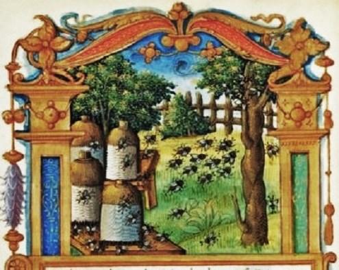 Illuminated Manuscript BNF 1