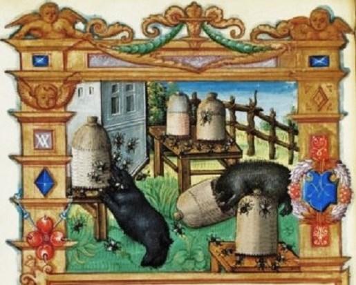 Illuminated Manuscript BNF 2