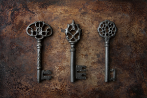 wp_skeleton_key