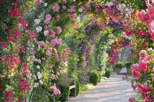 spectacular-rose-gardens-designs-arch-of-roses.jpg
