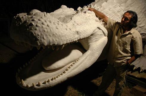 i-b18fea59cf6c7e35c7ccea0b3719fc12-Purussaurus