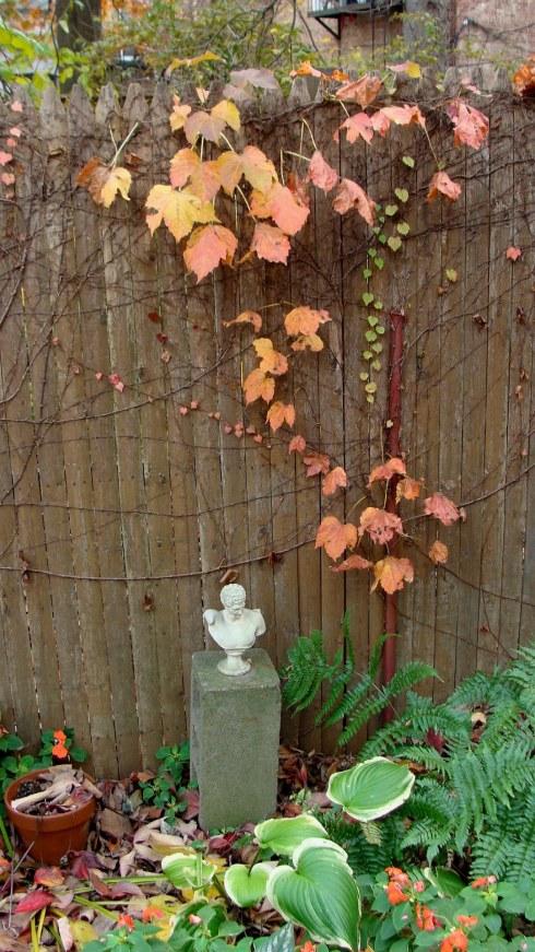 Autumn5.jpg