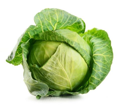 cabbage-03.jpg