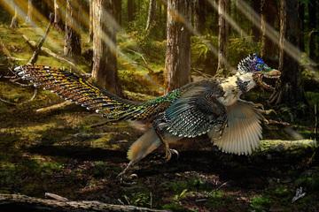 feathers-dinosaur-2-art.jpg