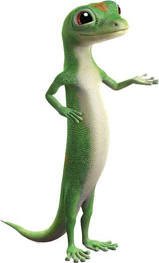 gecko-side
