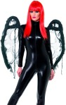 gothic-style-black-wings-358961