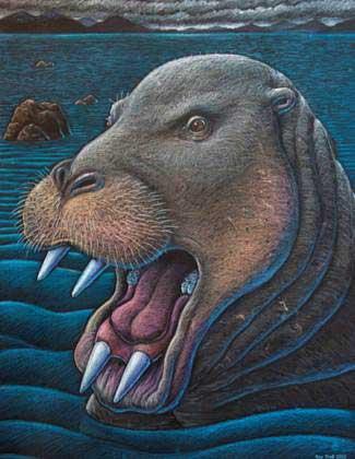desmostylian-in-Alaska-with-teeth (1)
